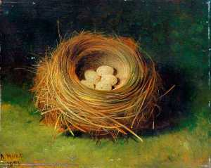 Abel Hold - Nest of a Bunting