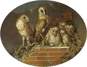 William Tomkins - Barn Owls with Their Broo..