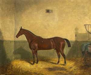 Richard Whitford - Bay Horse in a Stable