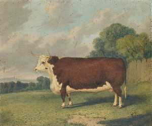 Richard Whitford - A Prize Cow in a Landscap..