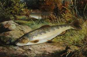 Benjamin Hold - Fish on a Grassy Riverbank