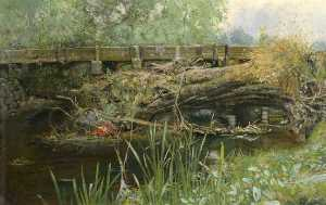 Percival Arthur Wise - The Haunt of the Moorhen