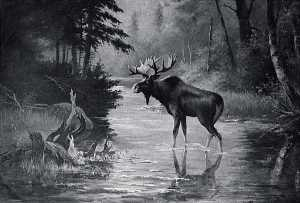 Von Luerzer - Water and Wood Scene with Moose, (painting)