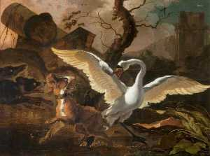 Abraham Hondius Danielsz - A Swan Enraged by Dogs