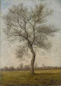 James Hey Davies - Study of an Ash Tree in W..