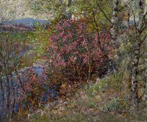 David Waterson - Flowering Shrubs, Spring on Esk