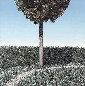 Englan George Murphy - Hedge and Cypress