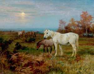 Wright Barker - Horses in a Paddock
