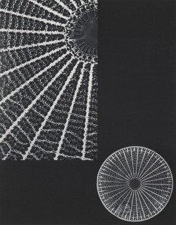 Diatomic Molecule, 1931 by Laure Albin Guillot (1879-1962) | Museum Quality Reproductions | ArtsDot.com