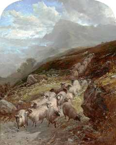 William Watson Ii - Sheep on a Mountainside