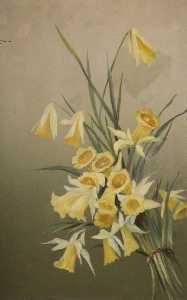 Constance Dutton Thompson - Daffodils